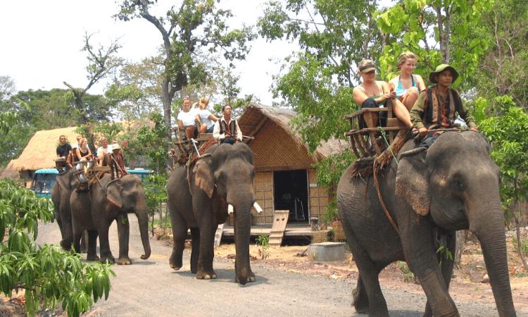 Central Highlands Vietnam - Yok Don National Park
